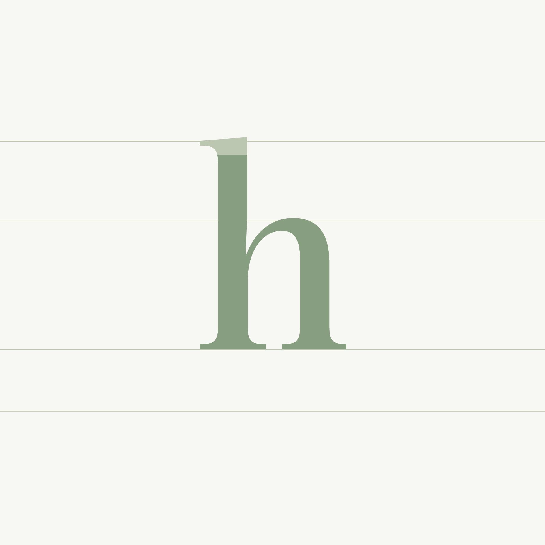 blog typografie anatomie letters infographic